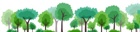 Notícias da Floresta